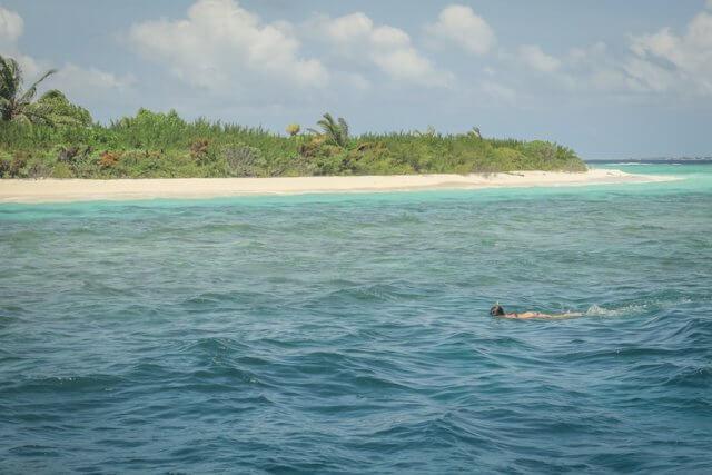 Malediven Reise Coco Palm Dhuni Schnorcheln