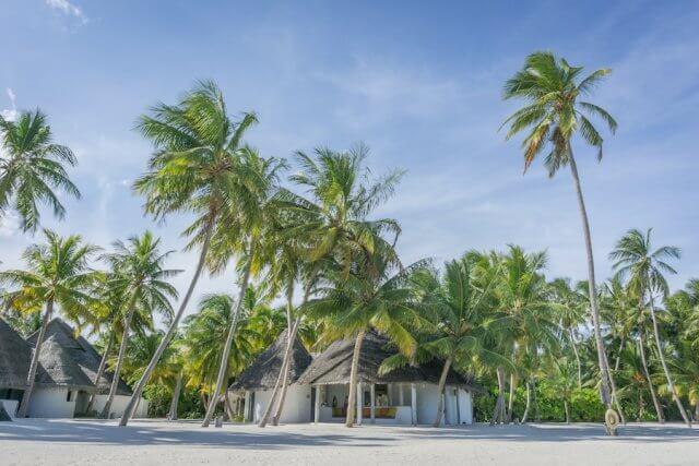 Malediven Urlaub Gili Lankanfushi Pavillon
