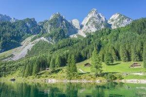 Oberoesterreich Dachstein Salzkammergut Almwiesen
