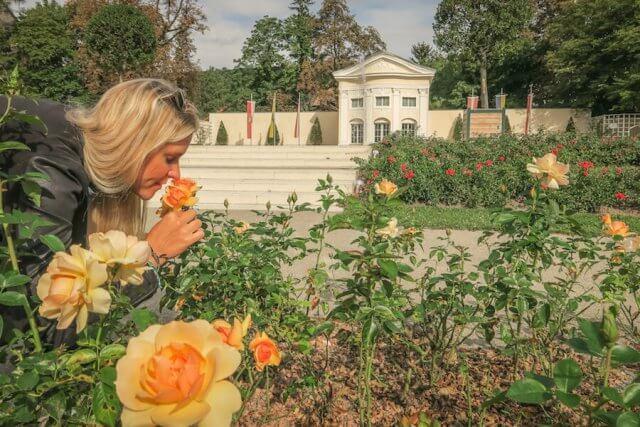 Baden bei Wien Rosarium Rosen