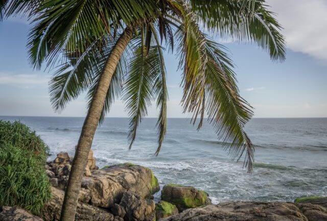Kerala Ayurveda Kur Südindien Strand