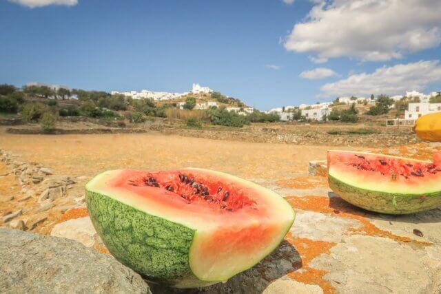 Sifnos Griechenland Narlis Farm Wassermelone