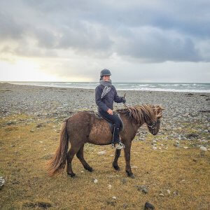 Island Urlaub Tipps Reiten