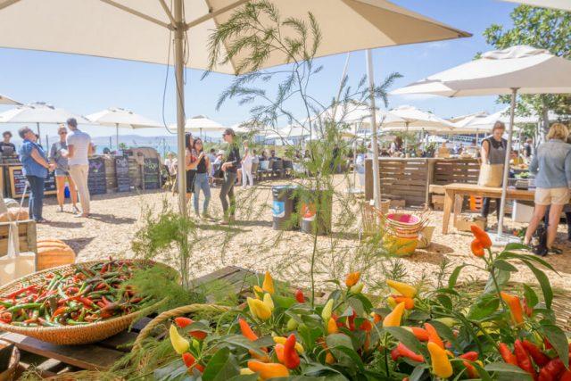 Kapstadt Urlaub Oranjezicht Farmers Market Essen