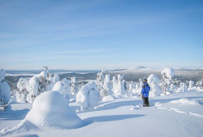 Lappland Winter