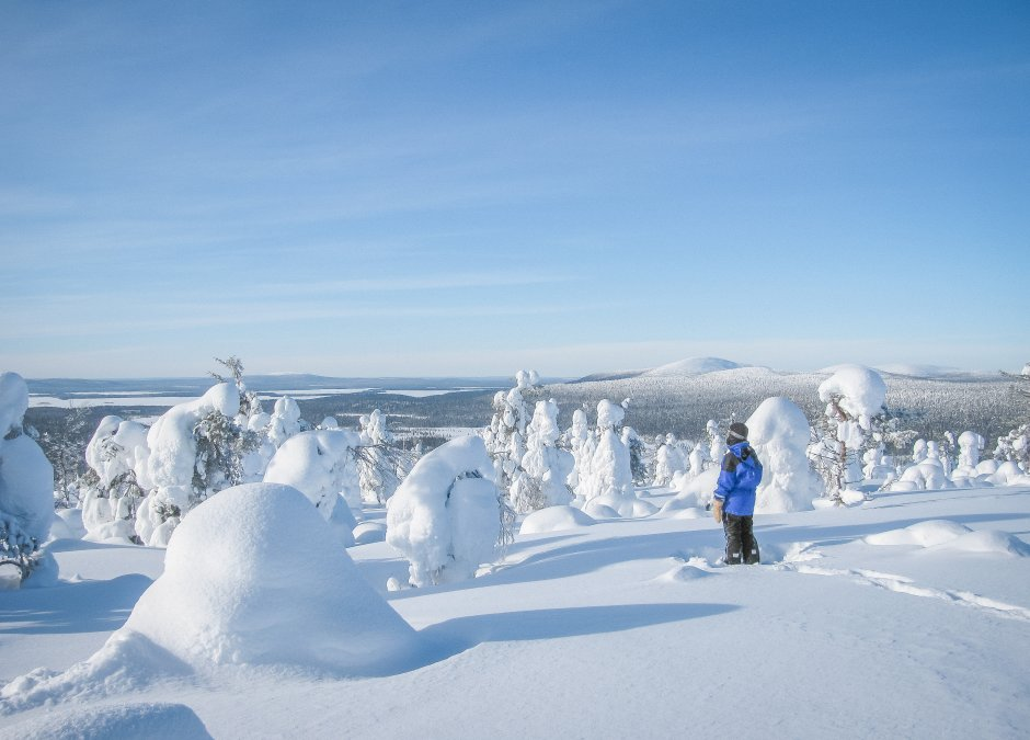 Lappland Winter