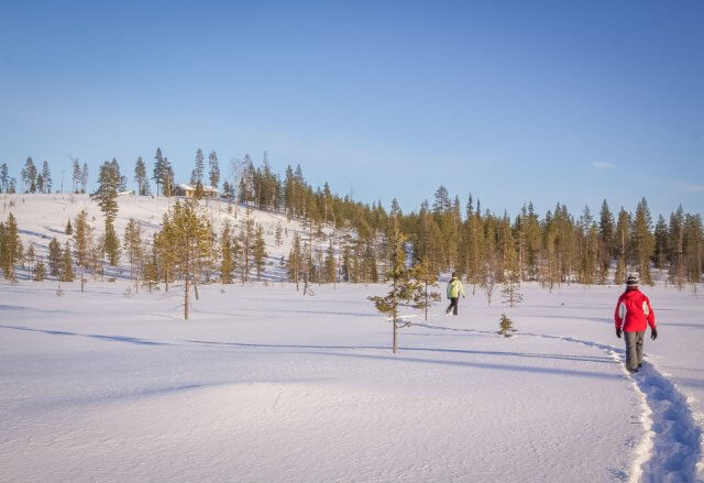 Lappland im Winter Schneeschuhtour