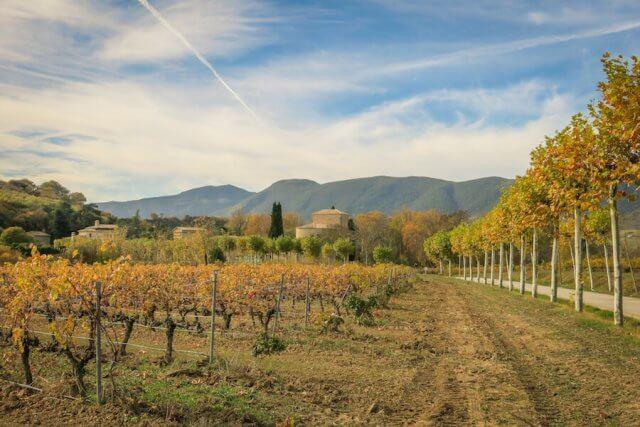 Navarra Spanien Bodega Otazu Pamplona Weingut
