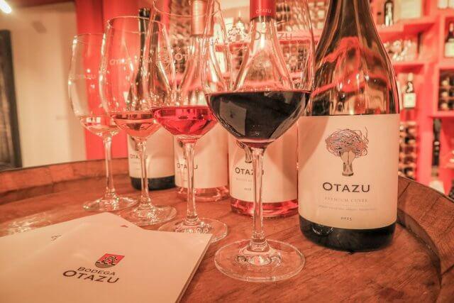 Navarra Spanien Bodega Otazu Pamplona Weingut Weinverkostung