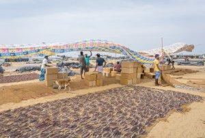Sri Lanka Rundreise Urlaub Fischmarkt Negombo