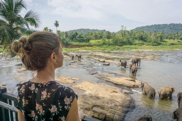Sri Lanka Rundreise Urlaub Pinnawala