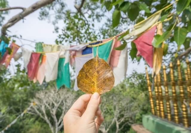 Sri Lanka Rundreise Urlaub Tempel Maho