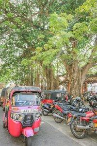 Sri Lanka Urlaub Galle Tuk Tuk