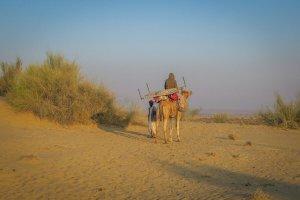 Rajasthan Rundreise Jaisalmer Kamelsafari