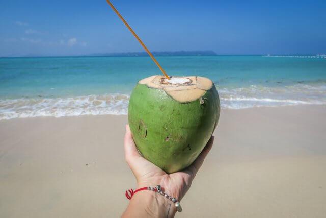Andamanen Inseln Kokosnuss Strand