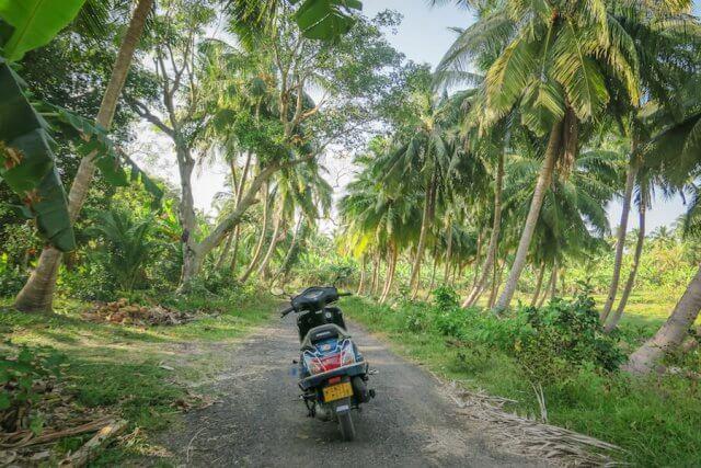 Andamanen Inseln Roller