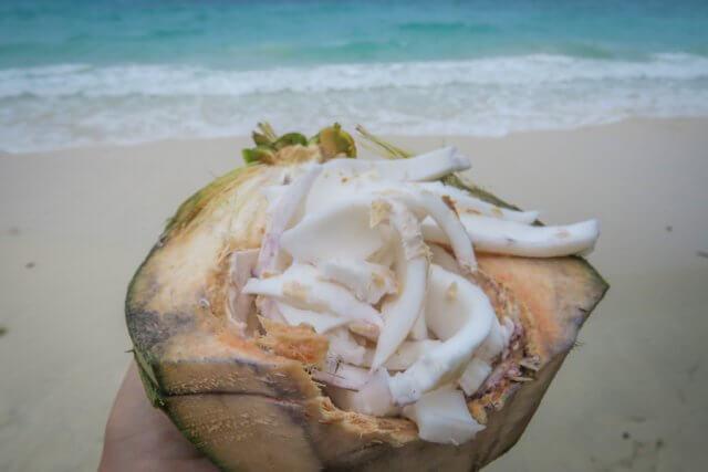 Andamanen Inseln Kokosnuss