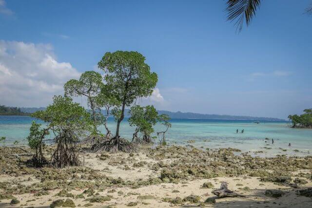 Andamanen Inseln Tauchen Strand Havelock