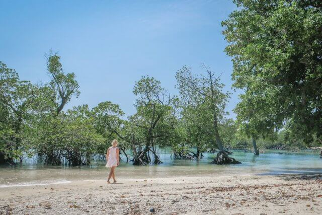 Andamanen Inseln Neil Island Silver Sand Beach Strand