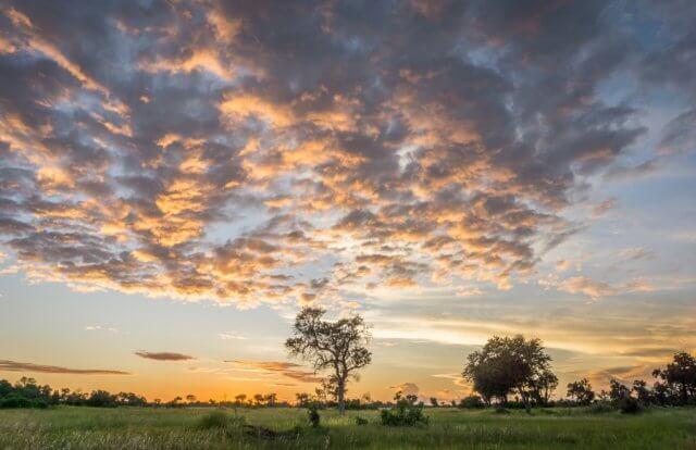 Botswana Okavango Delta Safari Abendhimmel