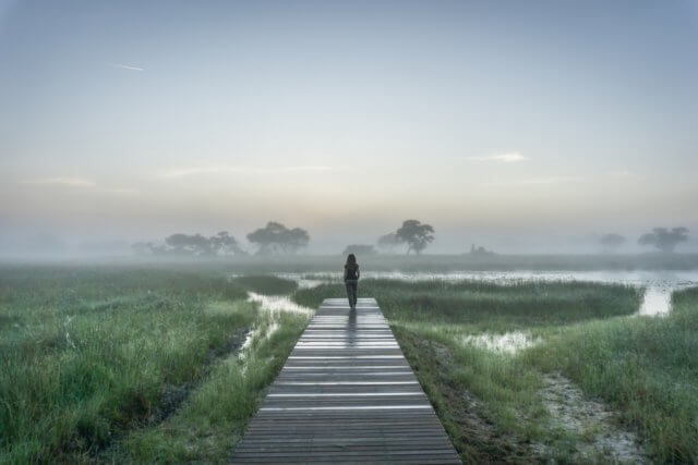 Botswana Okavango Delta Safari And Beyond Xaranna Lodge Nebel