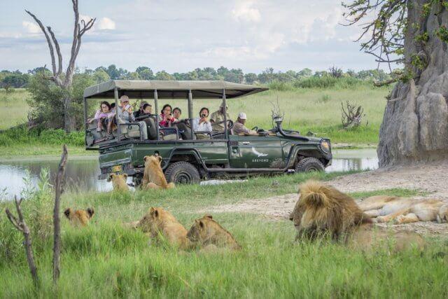 Botswana Okavango Delta Safari Loewen