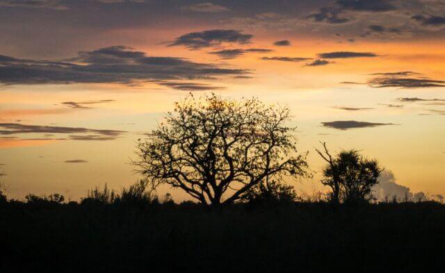 Botswana Okavango Delta Safari Nachthimmel