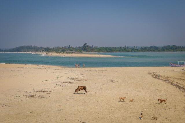 Goa Indien Paradise Beach Aussicht