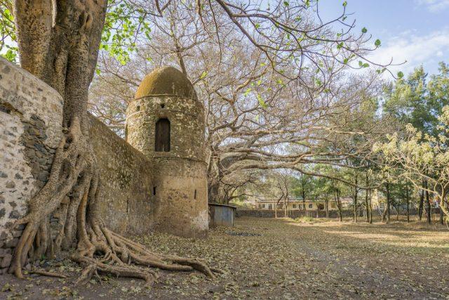 Aethiopien Reisen Gondar Bad des Fasiladas