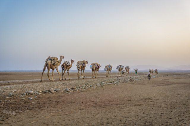 Aethiopien Reisen Jeeptour Danakilwüste Kamelkarawanen Salzwüste