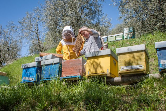 Sehenswuerdigkeiten Gardasee_Trentino_Riva del Garda Agriturismo Maso Botes Imker Honig