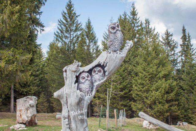 Wellnesshotel Suedtirol_Dolomiten Wandern_Urlaub Suedtirol Cyprianerhof Wanderung Tschafonhuette Holzkunst Eulen
