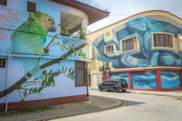 Aruba Urlaub ABC Inseln San Nicolas Streetart Papagei