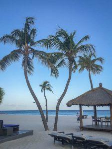 Aruba Urlaub ABC Inseln Bucuti Hotel
