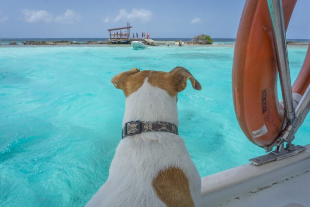 Aruba Urlaub auf den ABC Inseln Segeln