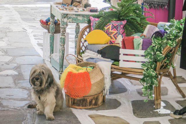 Kykladeninseln Tinos Chora Geschäfte Innenstadt