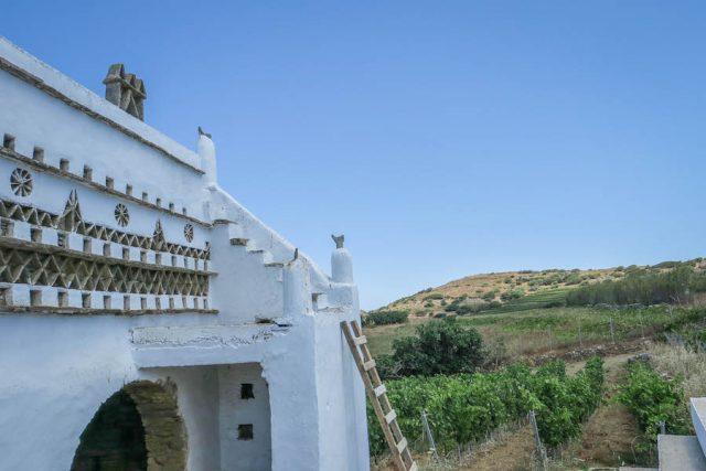 Kykladeninseln Tinos Vaptistis Winery Stenis Taubenhaus