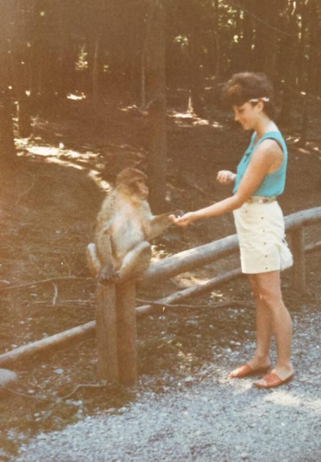 Reisen frueher und heute Affenberg Salem