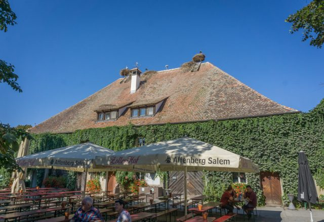 Bodensee Urlaub Affenberg Salem Stoerche