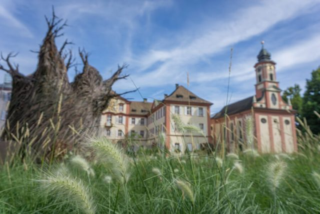 Bodensee Urlaub Insel Mainau Schloss
