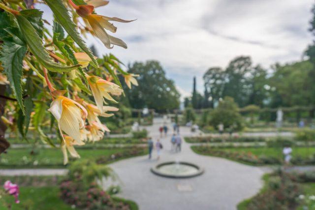 Bodensee Urlaub Insel Mainau Schlosspark
