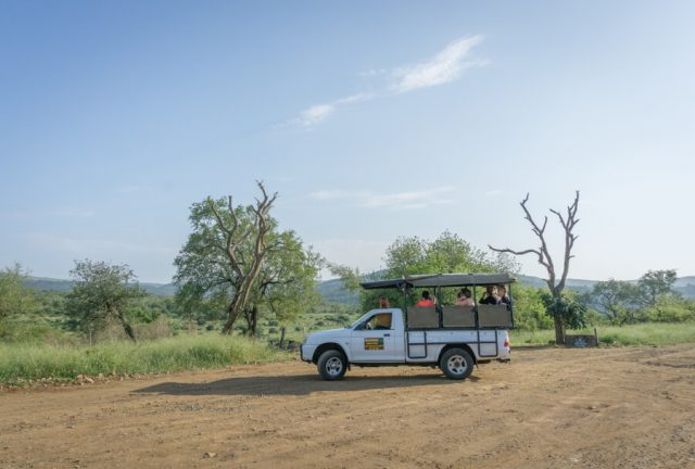 St Lucia Suedafrika Wetlands KwaZulu Natal Safari