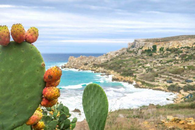 Gozo Malta Victoria San Blas Bay
