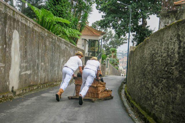 Madeira Urlaub Funchal Porto Santo Korbschlittenfahrt