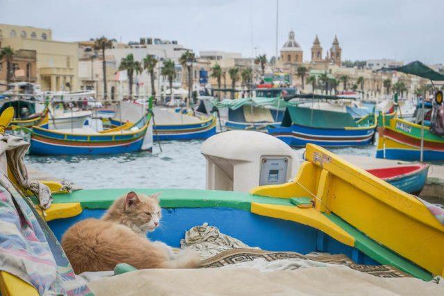 Malta Sehenswuerdigkeiten Malta Urlaub Marsaxlokk Fischerboote