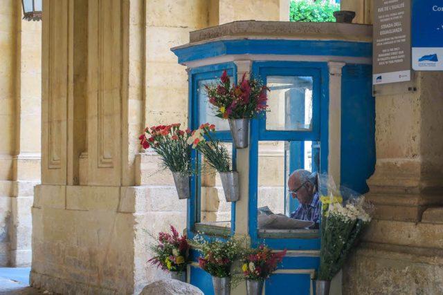 Malta Sehenswuerdigkeiten Malta Urlaub Valetta Blumenstand