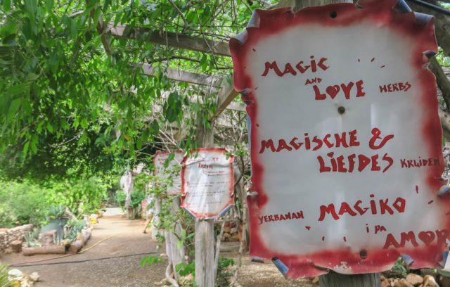 Curacao Urlaub Karibik niederlaendische Antillen Diana Krauetergarten
