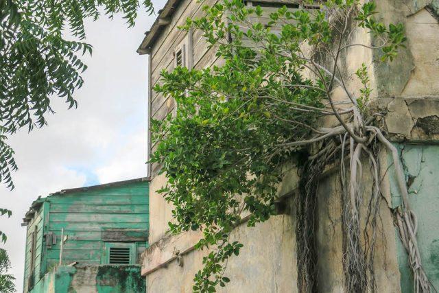 Curacao Urlaub Karibik niederlaendische Antillen Willemstad