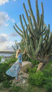 Curacao Urlaub Karibik niederlaendische Antillen Kakteen