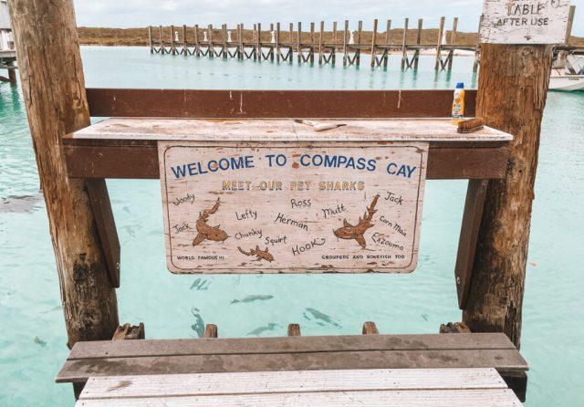 Bahamas Exumas Yacht Charter Compass Cay Sharks